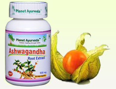Benefits of Ashwagandha | Ashwagandha Uses